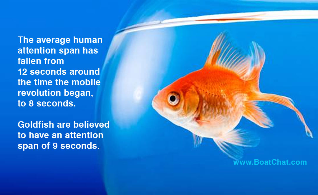 Online shoppers and the goldfish attention span